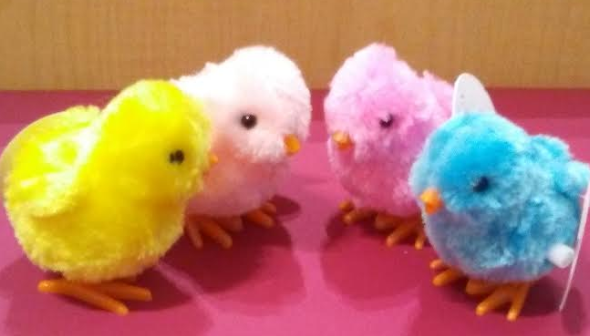 Wind Up Chicks