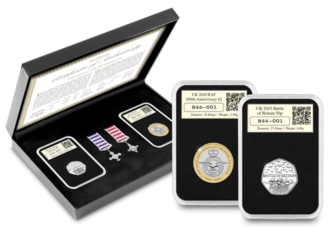 100th Anniversary of the RAF DateStamp™ Set - The Westminster Collection International