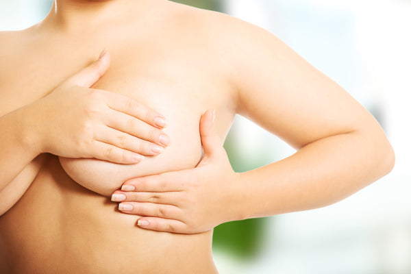 breast health guide - the boobuddy