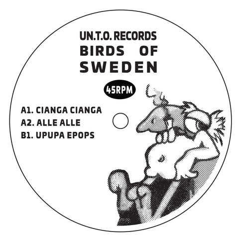 Birds of Sweden - Birds Of Sweden EP