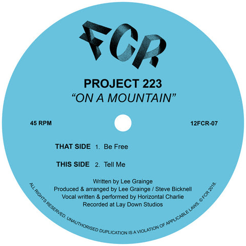 Project 223 - On A Mountain