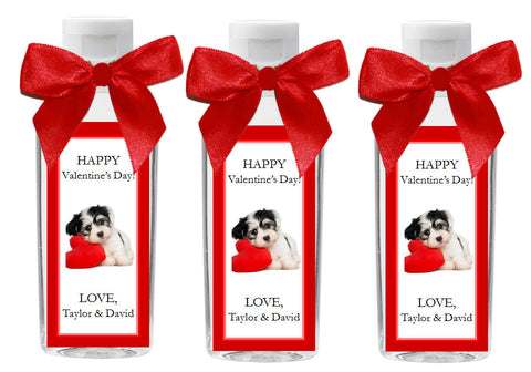 Valentine's Day Party Hand Sanitizer EMPTY Bottles Favors