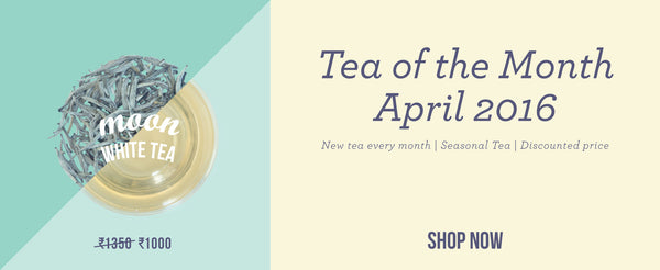 Tea of the month - Moon White Tea
