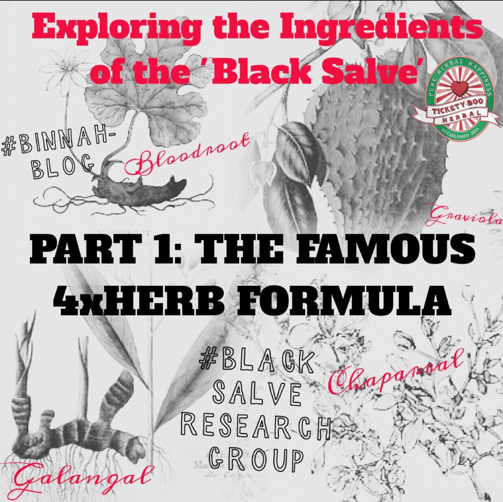 EXPLORING THE INGREDIENTS OF THE 'BLACK SALVE' - PART 1: THE FAMOUS 4XHERB FORMULA