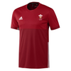 Wales Hockey Replica Playing Shirt (Youth, Boys, Red, Short Sleeves)