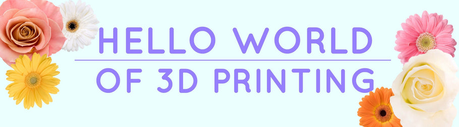 Hello World of 3D Printing!