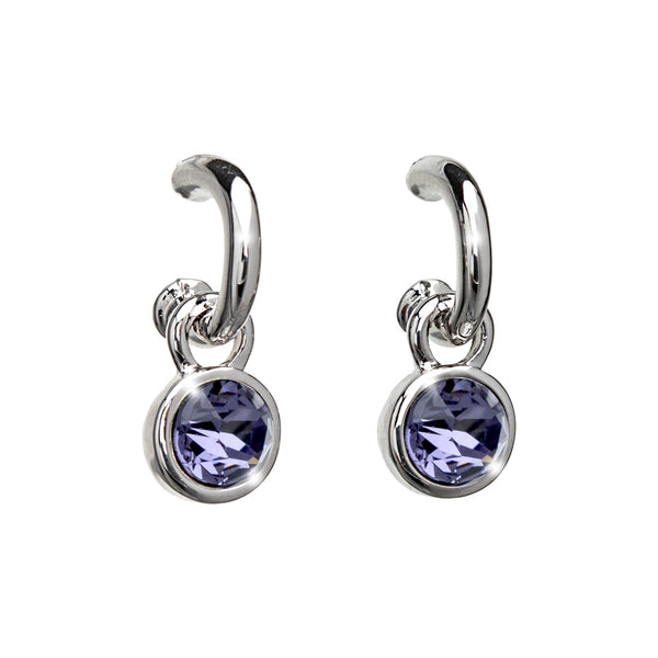 Purple Crystal Two in One Earring: Removable Charm & Hoop