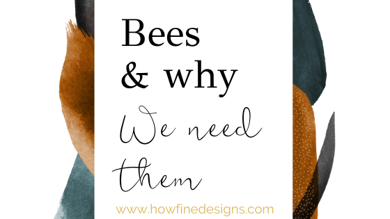 Bees and why we need them so much for our future