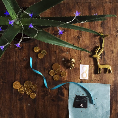Advent Day 8 Aloe plant, chocolate money, reindeer and Silver star tie/lapel pin