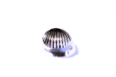 Seaside Dreams Sea Shell Ring Silver
