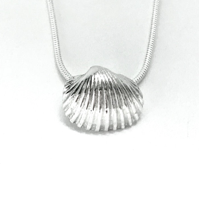 Silver seashell necklace on silver chain