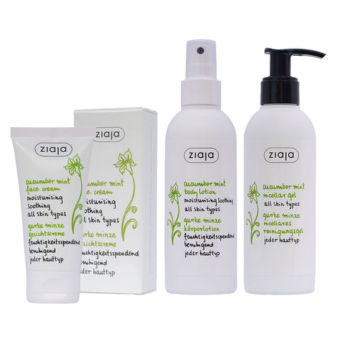 Cucumber Mint Bundle: Face Cream, Micellar Gel & Body Lotion