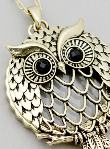 Owl Magnifying Glass Necklace