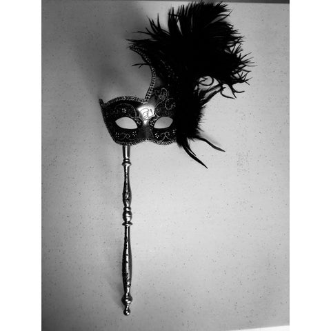 Black and Silver Mardi Gras Mask with Stick