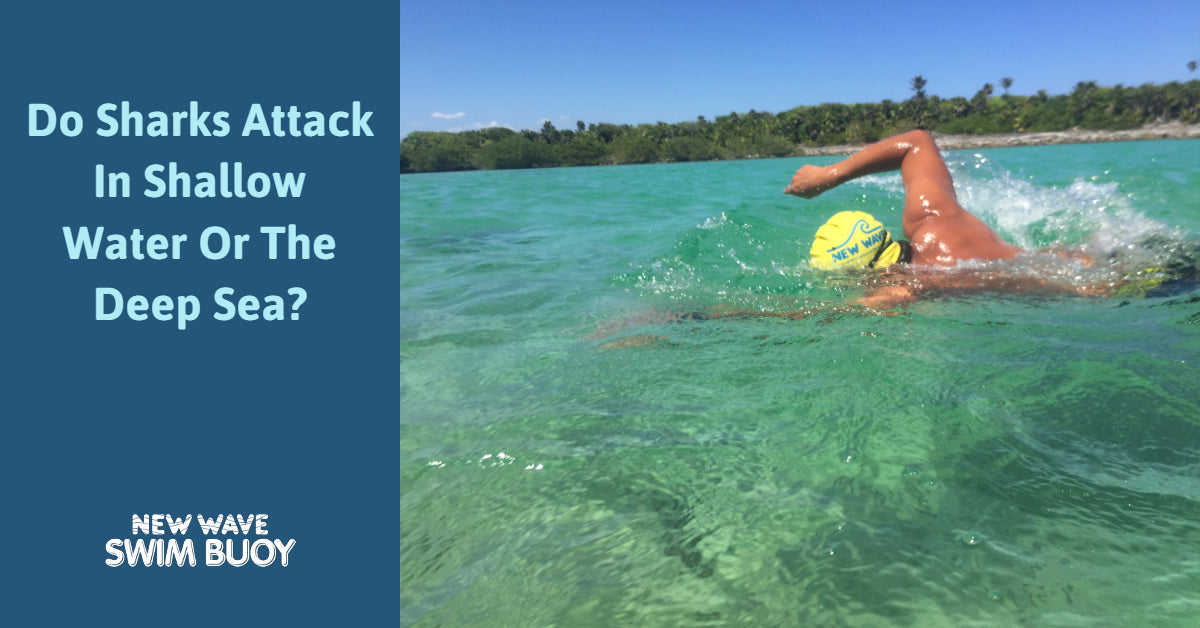 Do Sharks Attack In Shallow Water Or The Deep Sea? New Wave