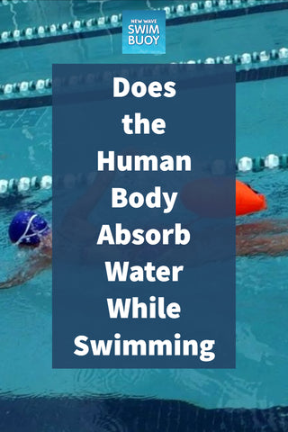 Does the Human Body Absorb Water While Swimming