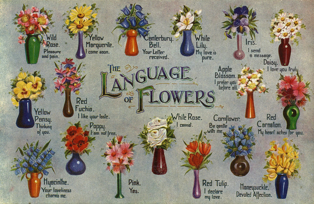 The Language of Flowers - Silver Tips Tea Blog