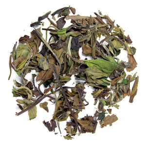 Organic White Peony - Silver Tips Tea's Organic Loose Leaf Tea