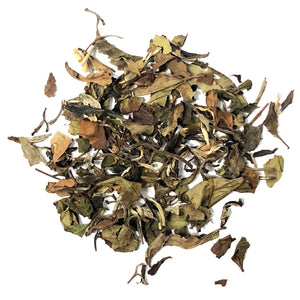 Moonlight & Melon - A blend of Organic China White (Pai Mu Tan/White Peony) with the fragrant, tropical essence of fresh melon - Silver Tips Tea's Organic Loose Leaf Tea