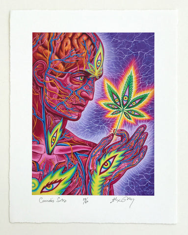 Cannabis Sutra by Alex Grey