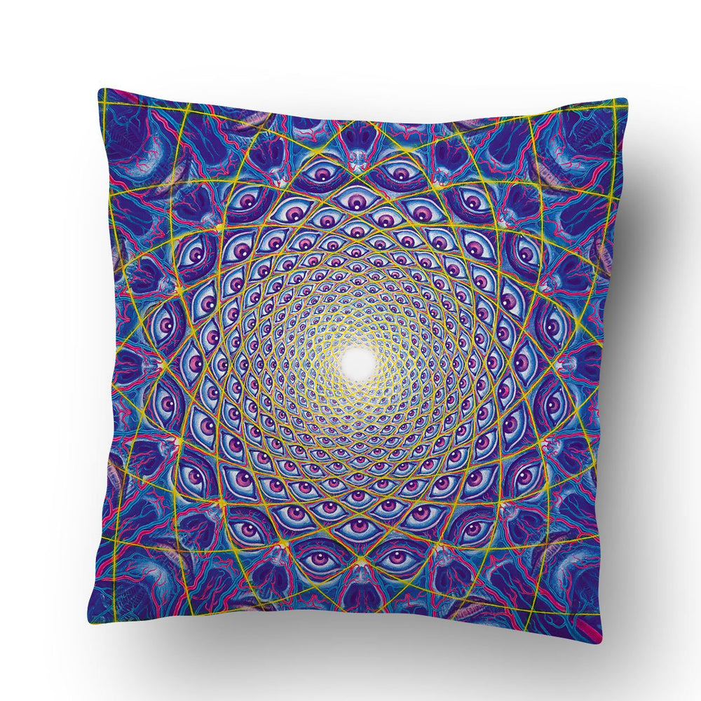 Collective Vision Pillow
