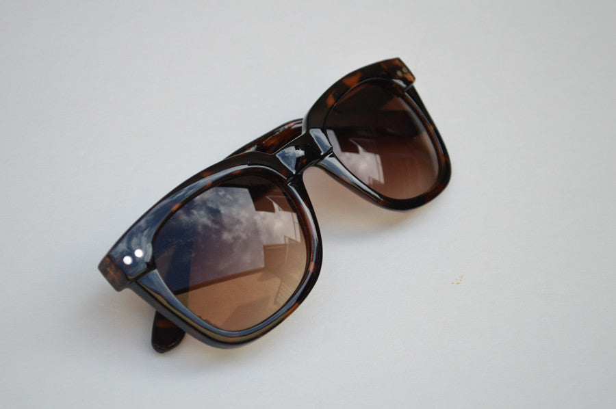 Wayfarer  Sunglasses Unisex  Brown Dark Lense side