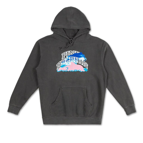 PINK DOLPHIN COLLEGIATE SKY HOODIE SP1911CSHGY
