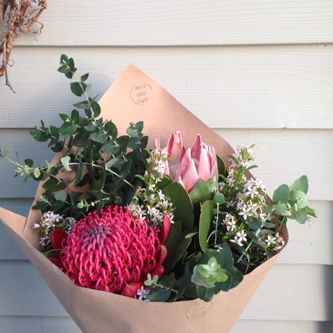 Beautiful natives: King Protea, Waratah, gum and Eriostemon