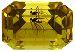Amber with Insect Faceted