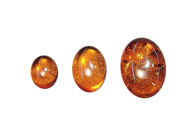 Natural Extra Fine Amber - Oval Cabochon - Baltic Region - AAA+ Grade