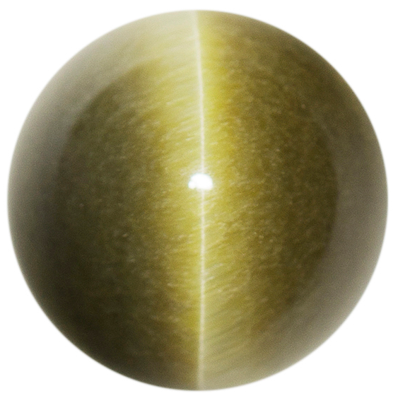 Natural Extra Fine Deep Green Cat's Eye - Round Cabochon - South Africa - AAA+ Grade