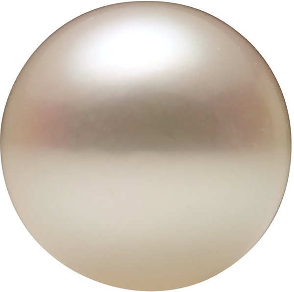 Natural Extra Fine White Japanese Akoya Saltwater Pearl - Round - Half-Drilled - Japan - AAA+ Grade