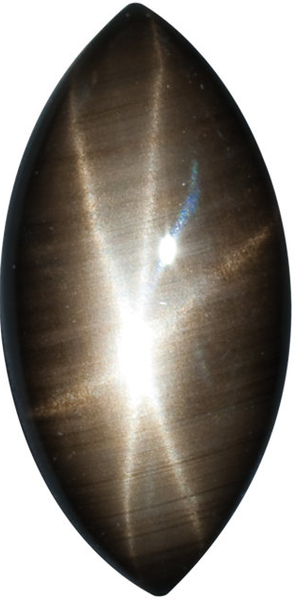 Natural Fine Black Star Sapphire - Marquise Cabochon - Unheated, Untreated - Sri Lanka - Top Grade - NW Gems & Diamonds