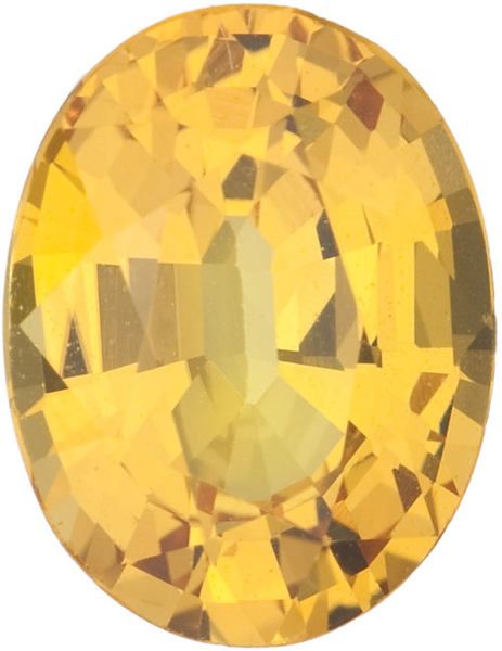 Natural Fine Rich Yellow Sapphire - Oval - Sri Lanka - Top Grade - NW Gems & Diamonds