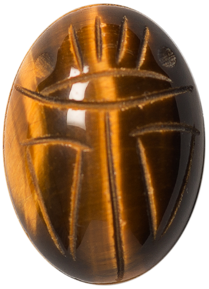 Natural Fine Deep Gold Bronze Tiger's Eye Scarab - Oval - South Africa - AAA Grade