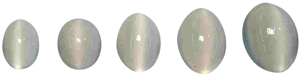 Natural Extra Fine White Cat's Eye Moonstone - Oval Cabochon - Madagascar - AAA+ Grade