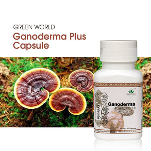 Ganoderma Plus Capsule