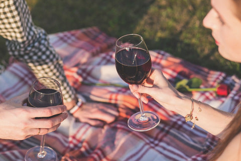 a couple toasting wine glasses in a picnic outside