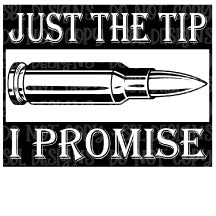 Just The Tip I Promise HTV Print