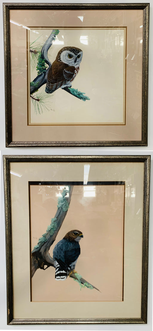 1978 Water Color of Birds of Prey Painting, a Pair, Signed Matted and Framed
