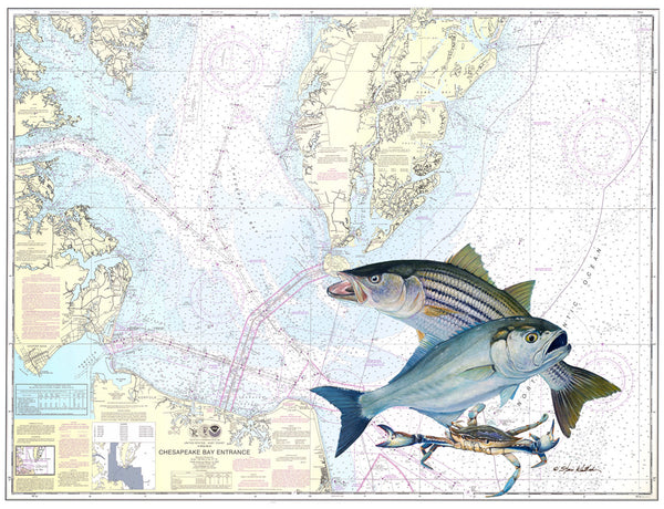 SALE - Chesapeake Bay Entrance Chart Art