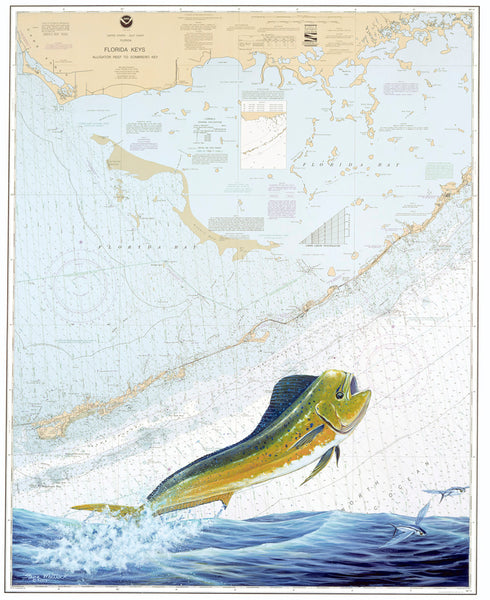 SALE - Middle FL Keys Dolphin Chart Art