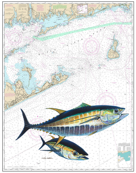 SALE Chart Art - Montauk Tuna