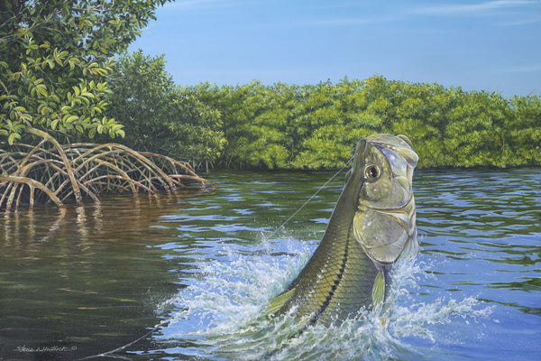 What Is Lacquer >> Fine Art | Linesider Cove Snook | Steve Whitlock Game Fish Art – Steve Whitlock Game Fish Art Inc