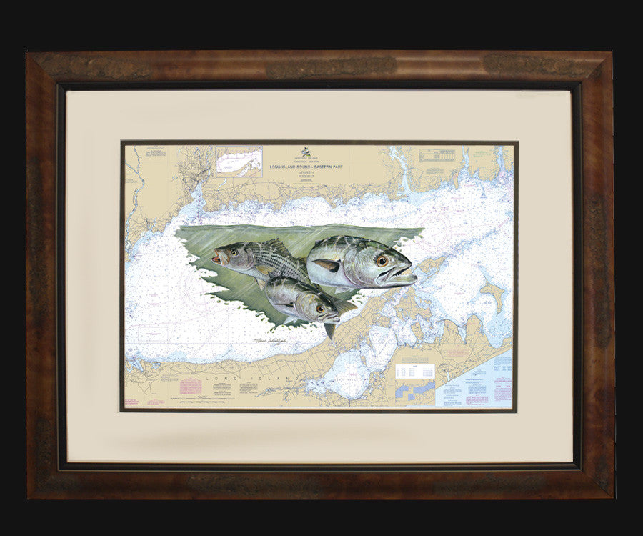 Long Island Sound Chart Art | Steve Whitlock Game Fish Art – Steve ...