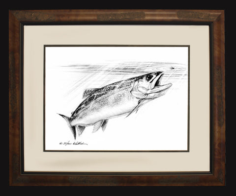 Brown Trout Pencil Art