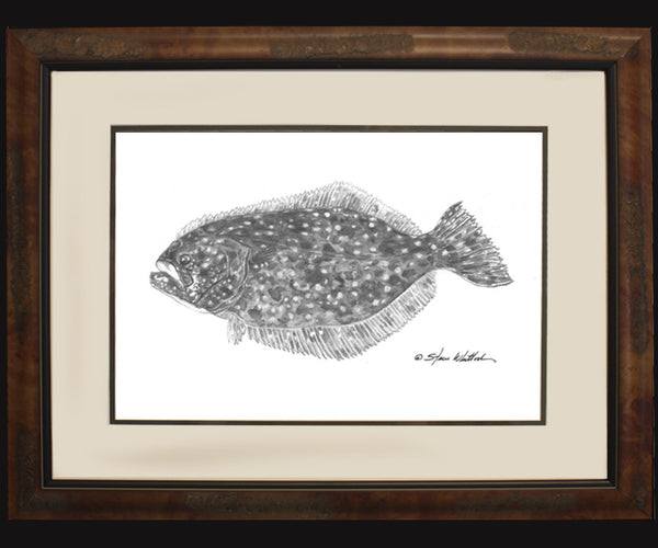 Pencil Art - Flounder