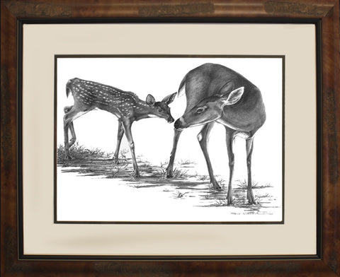 Touching Moment (Doe & Fawn) Pencil Illustration