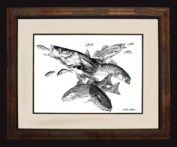 Pencil Art - Inshore Slam