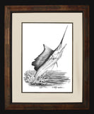 Pencil Art - Sailfish Pencil